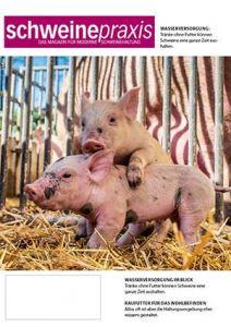 ABONNEMENT: Schweinepraxis